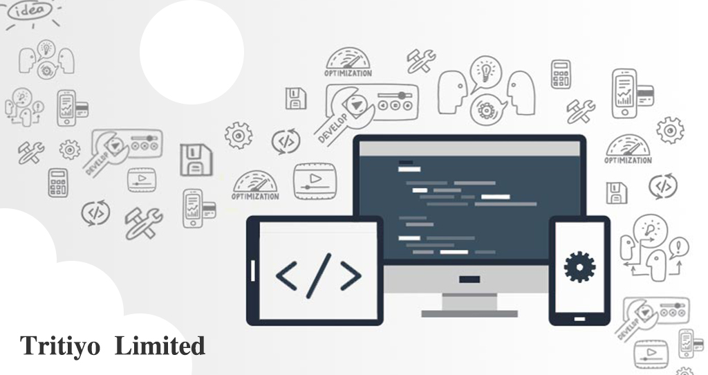 Custom software development for special business needs